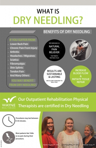 Outpatient Rehabilitation Physical Therapists are certified in Dry Needling