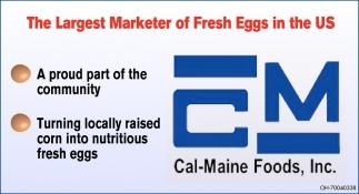 Fresh egg producer
